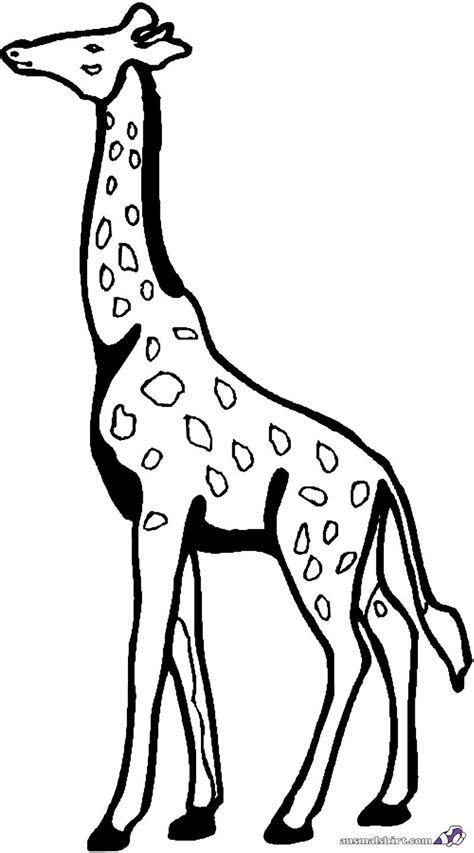 ausmalbilder giraffe kostenlos malvorlagen zum