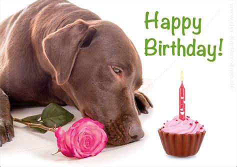 doppelkarte geburtstagskarte labrador happy birthday