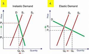 Three Types Of Elasticity