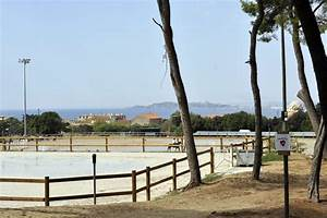 Ecurie Marseille : centre questre marseille pastr quitation faire du cheval marseille ~ Gottalentnigeria.com Avis de Voitures