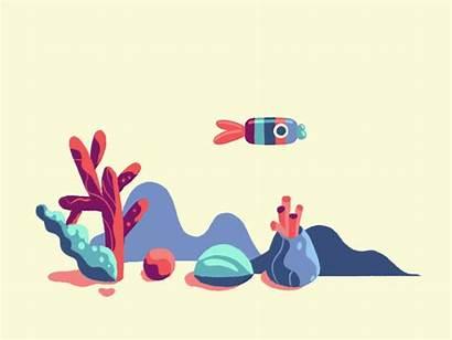 Fish Animation Dribbble Flat Motion Illustration Animated
