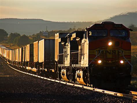 Photo Of Cn Container Cargo Train At The