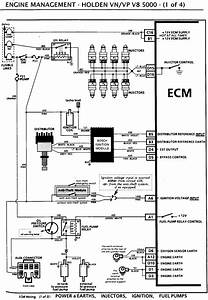 Vn Vp Engine Wiring Diagram