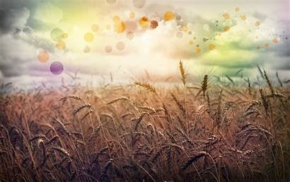 Country Wallpapers Abstract Wheat Desktop Rainbow Field