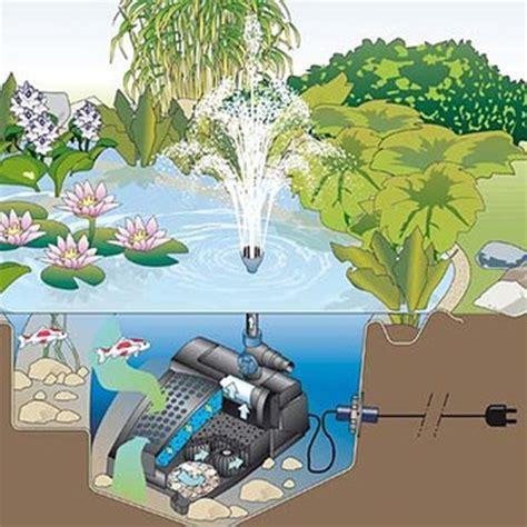 choisir filtres et pompes pour bassin de jardin le magazine gamm vert