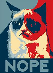 The gallery for --> Nope Cat Obama
