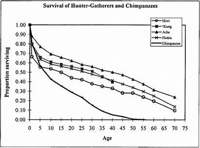 Hunter Ancestors Span Longer Apparent Should Features