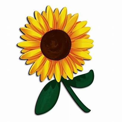 Sunflower Cartoon Clipart Clip Flower Funny 3d