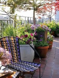 10, Tips, To, Start, A, Balcony, Flower, Garden
