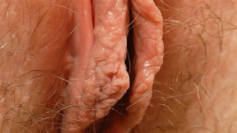 Female Textures Stunning Blondes Hd 1080pvagina Close Up Hairy Sex Pussyby Rumesco Eporner