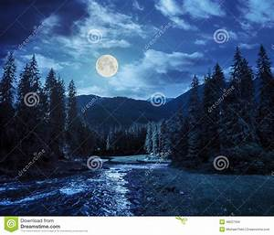 Mountain River In Pine Forest At Night Stock Photo - Image ...