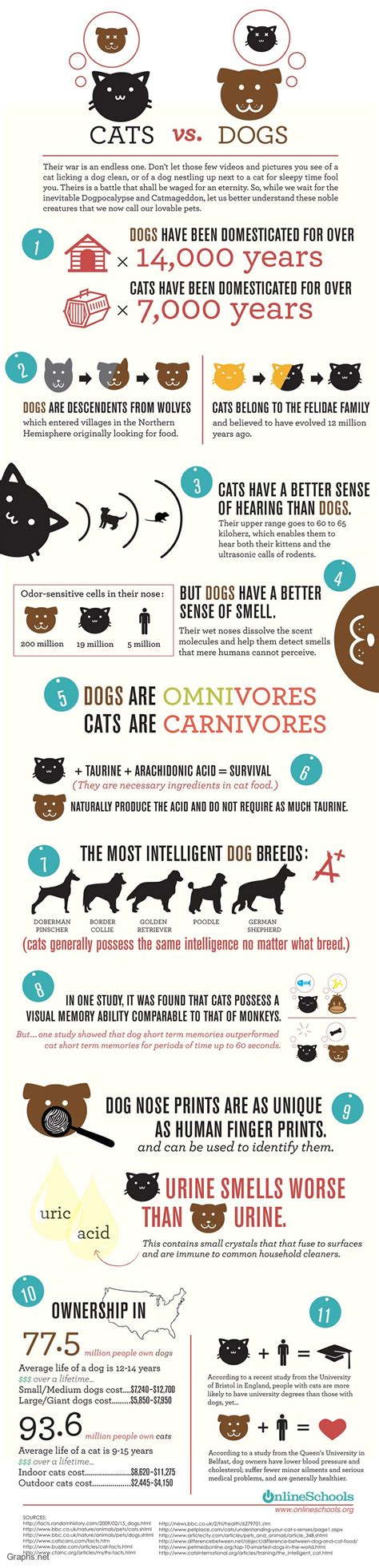 cats dogs facts why than better vs cat infographic dog infografica person funny infographics animal pet between cani differences infografia