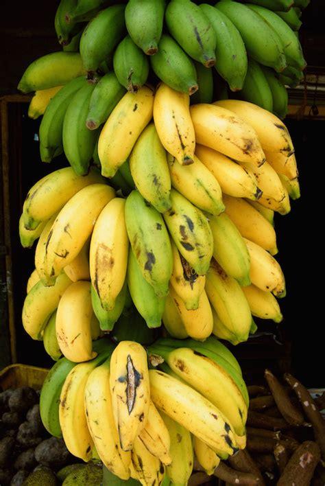 bananes lun des fruits preferes des francais