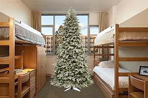 Christmas Lights In Columbia Maryland Overzealous Christmas Freak Annoys Rieber Terrace Roommate