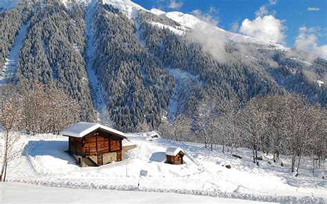 cabin in the mountains residential cabin advantages during the cold period