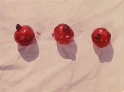 Pomegranates 1969 Pomegranate Nobrashfestivity Fuentes Lexi Hematoma