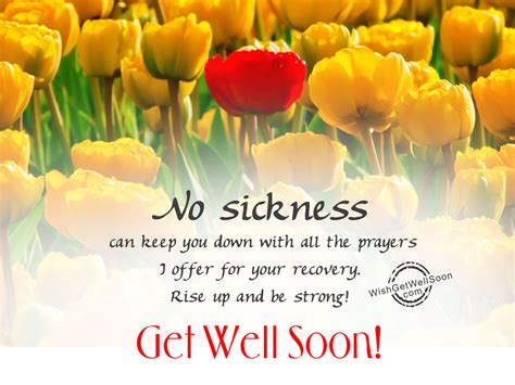 Get Well Soon Wishes Pictures, Images