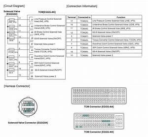 Kia Rio  Line Pressure Control Solenoid Valve Circuit