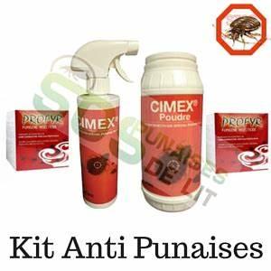 Insecticide Punaise De Lit : pack insecticide punaise de lit traitement 1 chambre ~ Farleysfitness.com Idées de Décoration