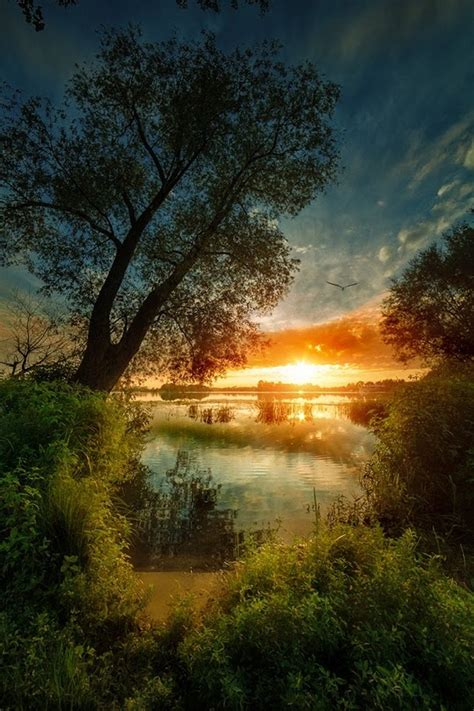 Fantastic nature, Backgrounds for Photoshop