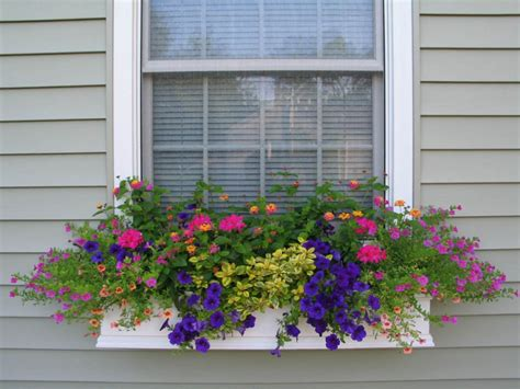 vintage junket window boxes