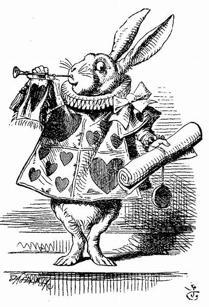 Illustrations Wonderland Alice Rabbit Tenniel Illustration Classic