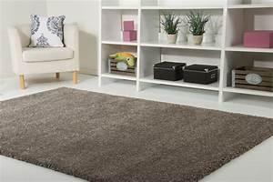 Teppich Grün Grau : langflor hochflor teppich chamonix shaggy creme beige grau gr n braun rot t rkis ebay ~ Markanthonyermac.com Haus und Dekorationen