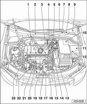 Enotecaombrerosseitaudi A3 Se Wiring Diagram Manual Storydiagrams Enotecaombrerosse It