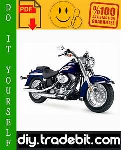 Harley Davidson Softail Flst  Fxst Series Motorcycle
