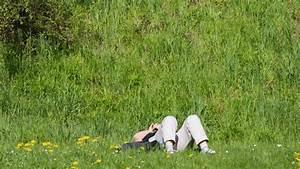 Rasenpflege Im Sommer : rasenpflege im sommer perfect die richtige rasenpflege with rasenpflege im sommer cool der ~ Frokenaadalensverden.com Haus und Dekorationen
