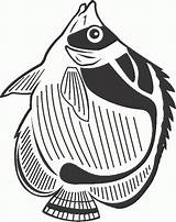 Fish Coloring Pages Coloring2print sketch template
