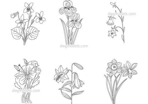 Flowering Plants Cad Blocks, Autocad Models Download