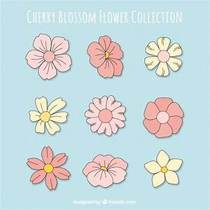 Great Cherry Blossom Flower Set Vector