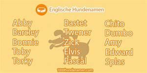 Besonders Auf Englisch : englische hundenamen ~ Buech-reservation.com Haus und Dekorationen