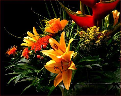Foto Blumenstrauß Kostenlos by Blumenstrauss Blumen Bl 252 Ten 183 Kostenloses Foto Auf Pixabay