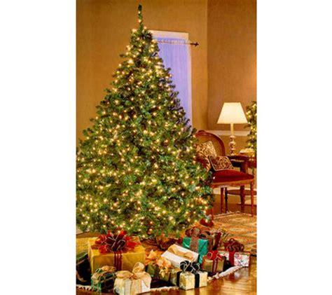 bethlehem lights pre lit christmas tree qvc com