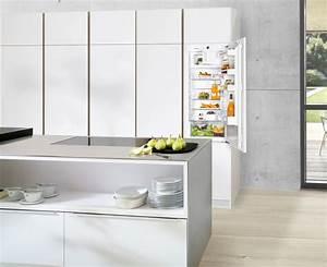 Refrigerateur Pose Libre Dans Une Niche : refrigerateur pose libre dans une niche en ce qui concerne gracieux de maison id es de ~ Melissatoandfro.com Idées de Décoration