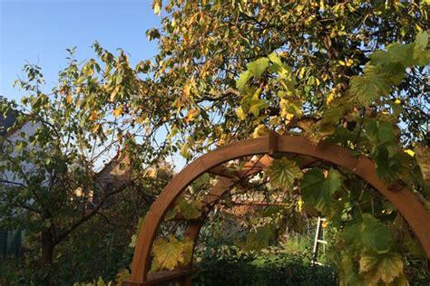 Arbeiten Im Garten Im Herbst by Garten Winterfest Machen Das Ist Im Herbst Zu Tun