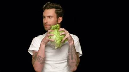 Veggie Giphy Gifs
