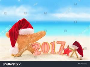 Happy New Year 2017 Starfish Santa Stock Photo 402844945 ...