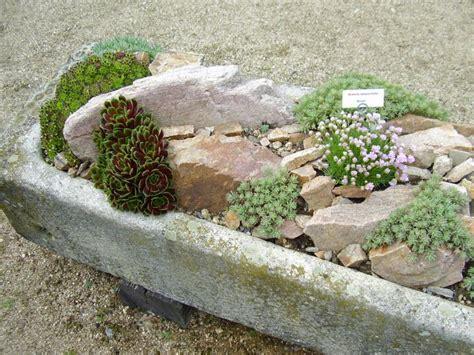 small rock gardens 18 simple small rock garden designs