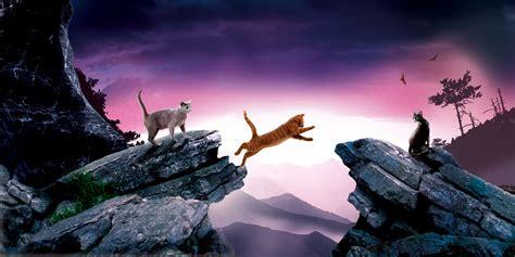 die april umfrage ist da warrior cats