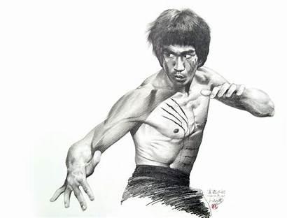 Lee Bruce Brandon Marciais Artes Portrait Dragon