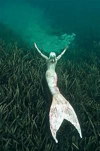 Meet a real-life mermaid | Dazed