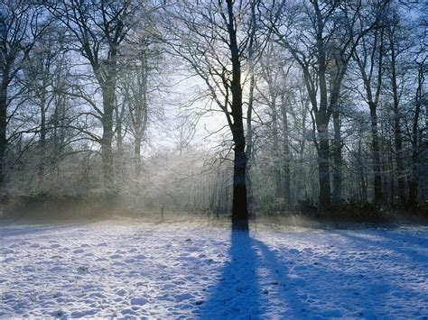 Free Winter Backgrounds by Free Winter Backgrounds Desktop Wallpaper Cave