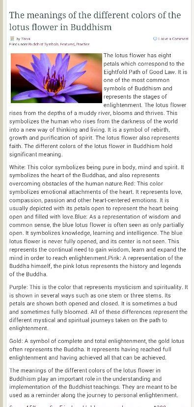 lotus flower color meanings buddhism  buddhas lotus