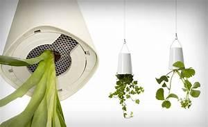 Boskke Sky Planter : sky planter by boskke ~ Orissabook.com Haus und Dekorationen