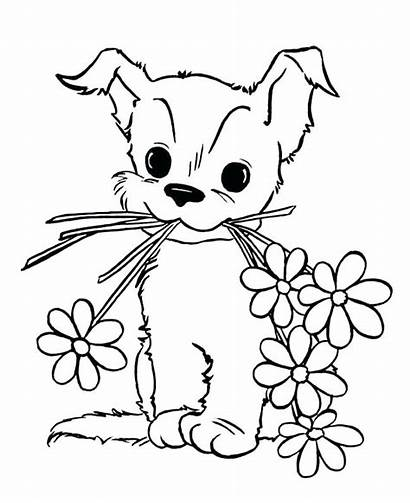 Coloring Pages Animal Dog