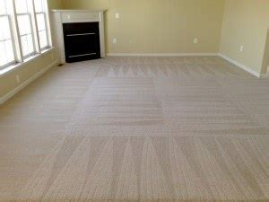 Denver Upholstery Cleaning by Commercial Carpet Cleaning Denver Co Office Janitorial