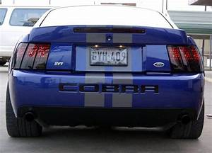 How Do You Like Your Terminator? Pics? | Mustang Forums at StangNet